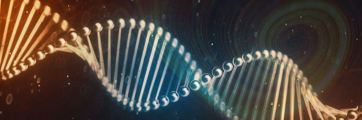 Många fördelar hittas i Plastex DNA